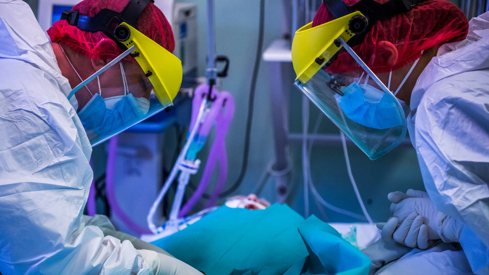 Koronavírus – miért ilyen magas a halálozás?