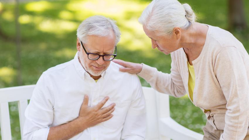 12+1 érdekesség a szívről, ami sokan nem tudnak
